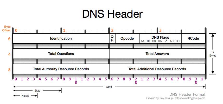 DNS HEADER